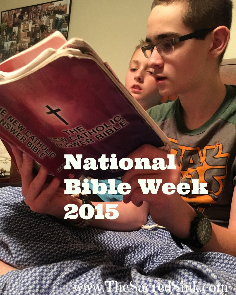 NationalBibleWeekTheSacredSink